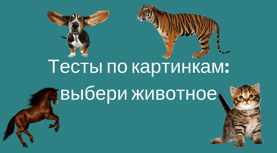 тест по картинкам для девушек: выбери животное