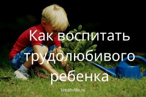Как воспитать трудолюбивого ребенка