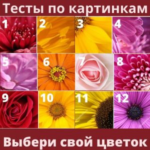 Тест выбери свой цветок и узнай...