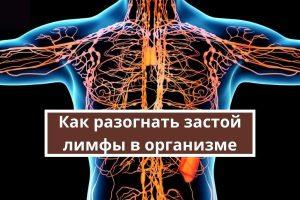 Как разогнать застой лимфы в организме