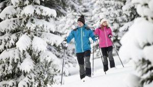 Прогулка на лыжах в лесу