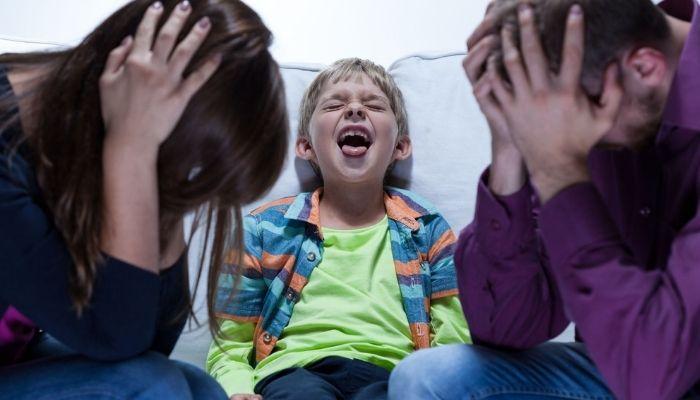 Ребенок истерит, кричит и капризничает