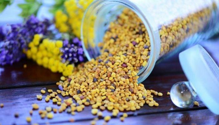 Пыльца пчелиная: описание и состав