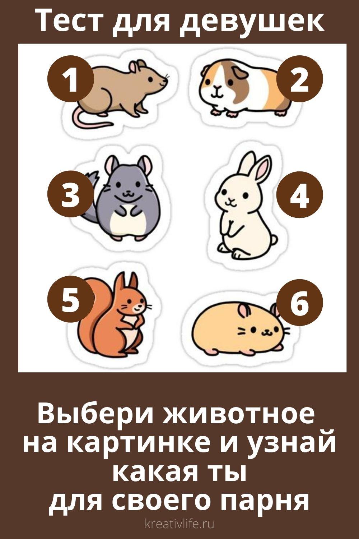 Тест для девушек выбери животное и узнай какая ты для своего парня