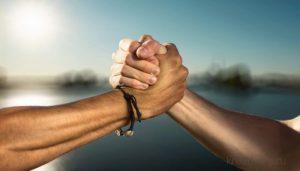 Дружба и благодарность