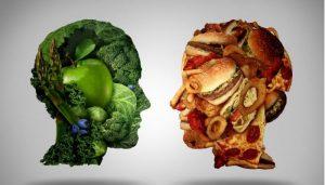 Вредная и полезная еда для головного мозга