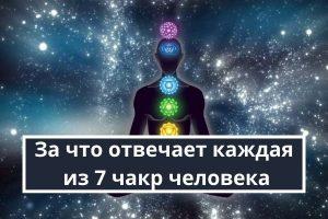 За что отвечает каждая из 7 чакр человека