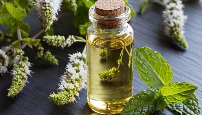 Эфирное масло травы и цветы