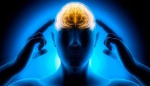 Мысли и мозг человека